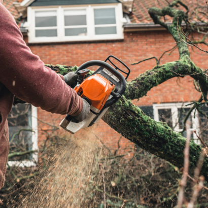 Tree Services Sandy Springs GA - Worker 4