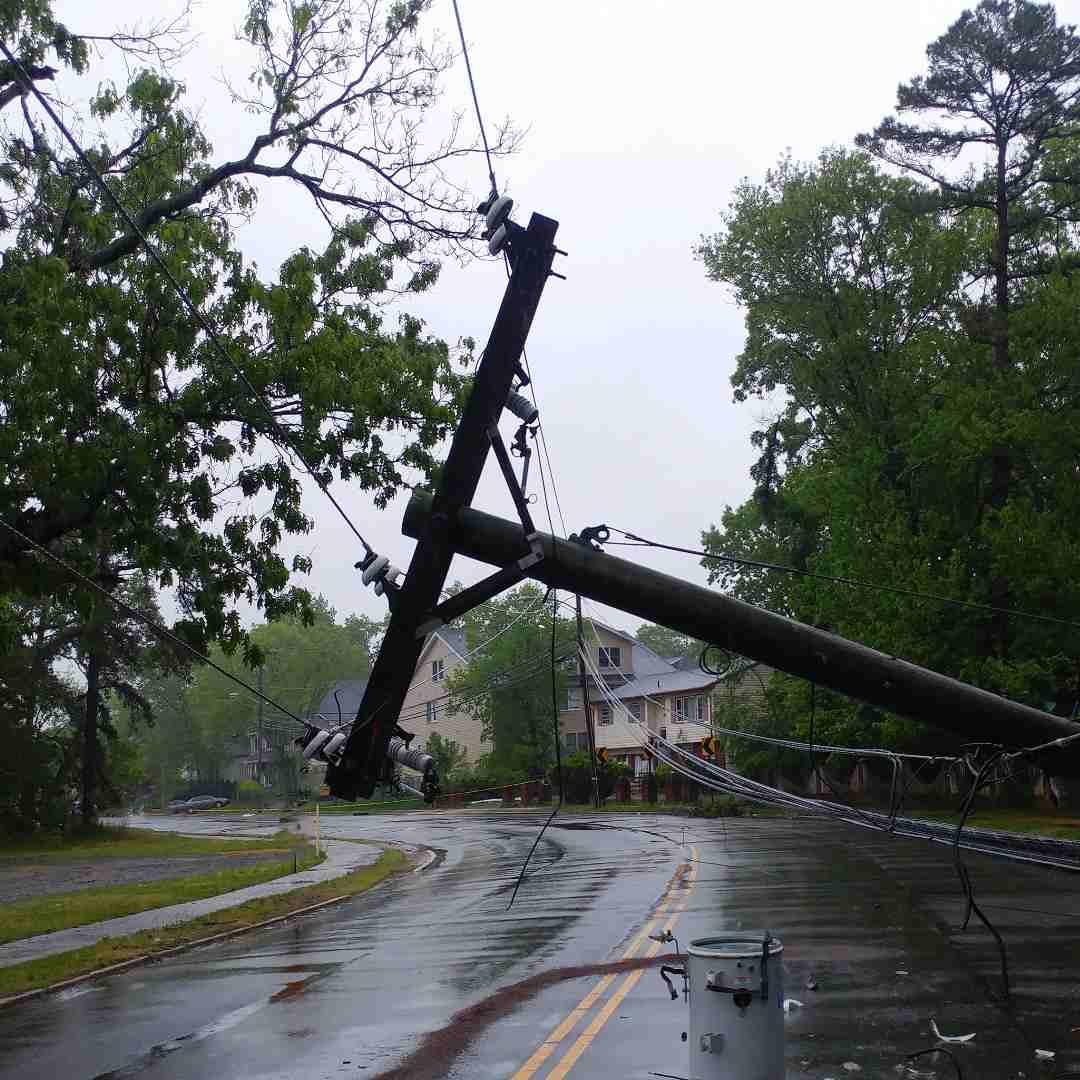 Tree Services Sandy Springs GA -Emergency