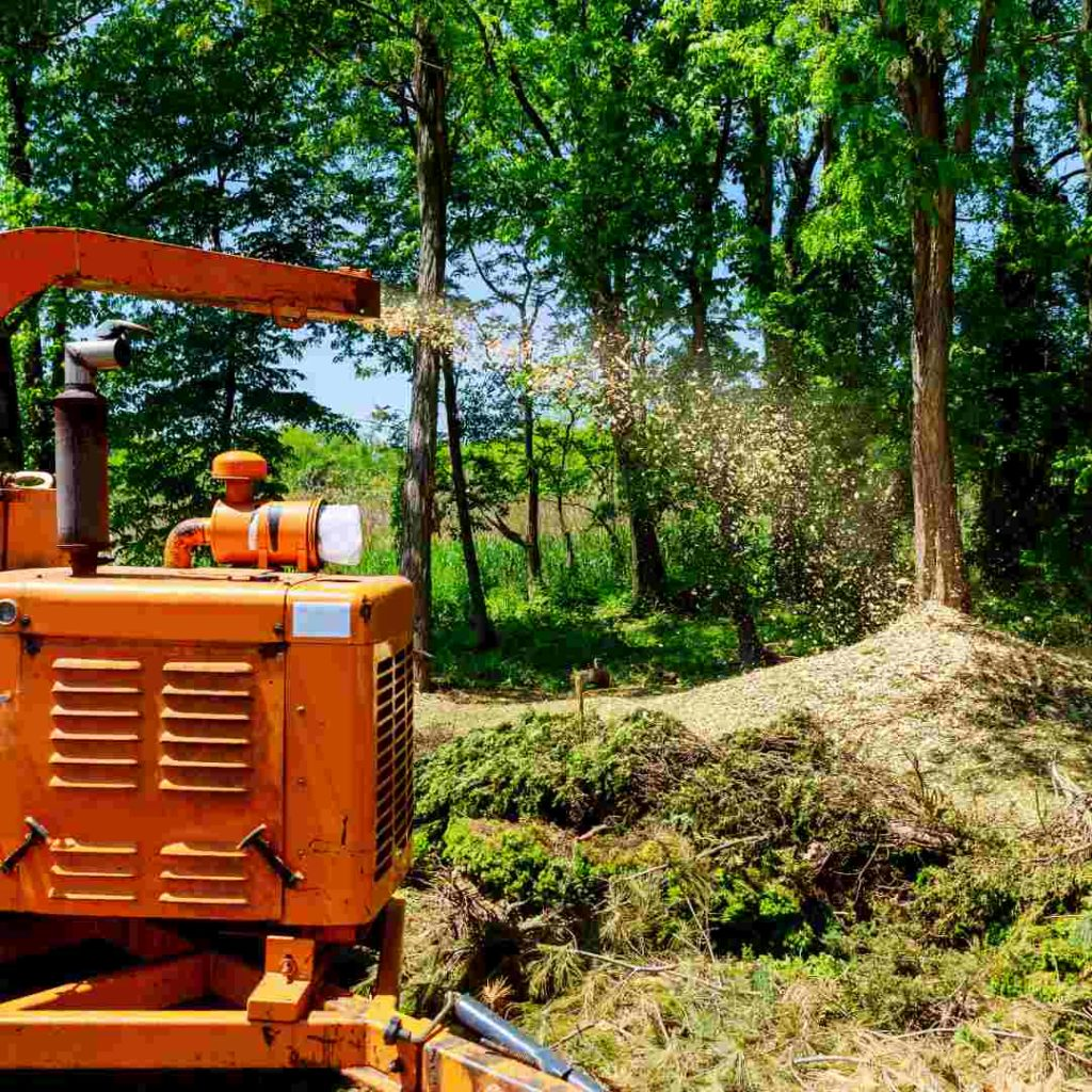 Tree Services Sandy Springs GA - stump grinder 2
