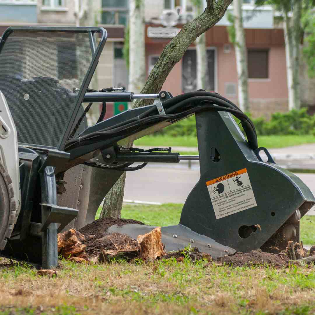 Tree Services Sandy Springs GA -stump grinder